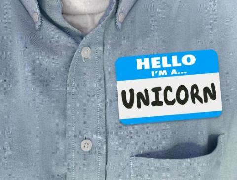 "Name tag on shirt reads ""Hello, I'm a unicorn"""