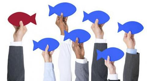 How to Write a Great Administrative Assistant Cover Letter — seven hands hold up cartoon fishes; one is a different color and facing the opposite way as the others